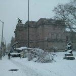 Museo Carnegie de Historia Natural