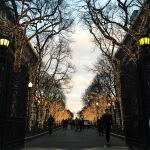 El College Walk de Columbia University iluminado por Navidad