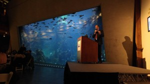 Novoselic_Aquarium_Seattle